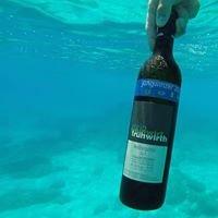 Weinbau Frühwirth