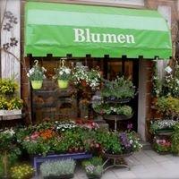 Blumen Schachtner