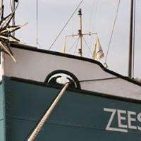 Zeester Nijmegen