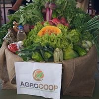Agrocoop - Cooperativa de Trabalho Agropecuária Mista de Barro Alto