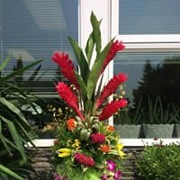 Delmerie Flowers