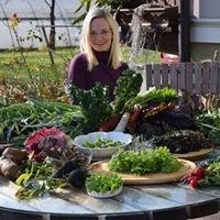 Gemüsebauernhof Flucher-Plaschg
