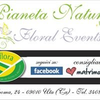 Pianeta Natura Floral Events