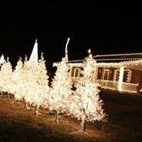 Clark Family Christmas Light Show