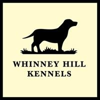 Whinney Hill Kennels
