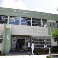 Hospital Veterinario Para Pequeñas especies  FMVZ / UAEMex
