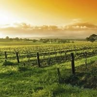 Clare Valley Wine Country, South Australia.