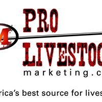 Pro Livestock Marketing
