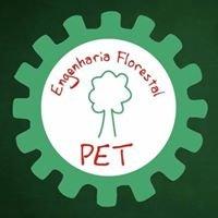 PET - Engenharia Florestal/UNESP - Botucatu