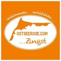 Ferienwohnung Ostseerose - Zingst