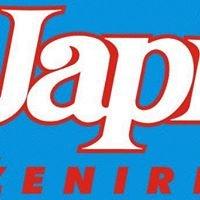 JAPI Inženiring