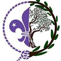 Scouts Jaén MSC
