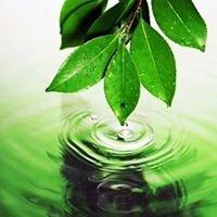 Harmonious Energy Holistic Therapies  -  Debbie Simpson