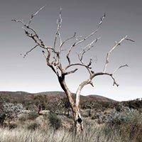 Art Photography by Robert Fyfe
