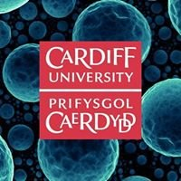 Cardiff Catalysis Institute