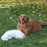 Peace, Love and Paws Petsitting
