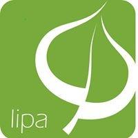 Apartmaji Lipa / Apartments Lipa