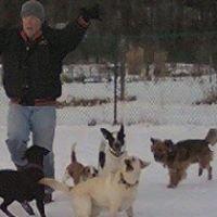 Shawna's Dog's Doggy Daycare