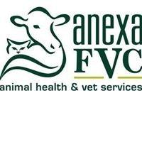 Anexa FVC Vets Ngatea