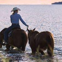 P-Ranch Alt Reddevitz - Urlaub und Reiten auf der Ostseeinsel Rügen
