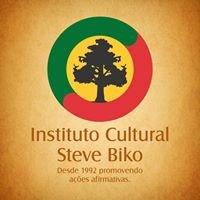 Instituto Cultural Steve Biko