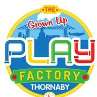 "The ""Grown up"" Play Factory - Thornaby - Teesside"
