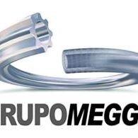 Grupo Megga