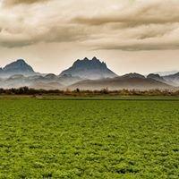 Coronation Peak Ranches