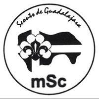 Scouts de Guadalajara MSC