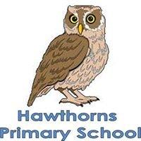 Hawthorns Primary School