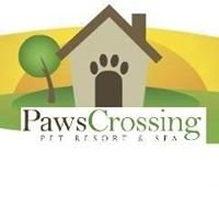 Paws Crossing
