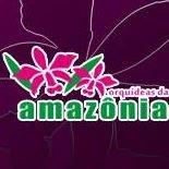 Orquídeas da Amazônia