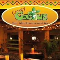 Restaurant Crazy Cactus