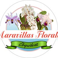Maravillas Florales Paraguay