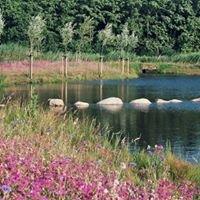Reuvers Buro voor Groene Ruimtes