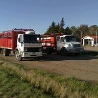 Transporte de hacienda  Maccari