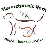 Tierärztliche Praxis für Kleintiere Thomas Koch