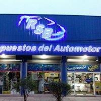 Repuestos Del Automotor San Bernardo