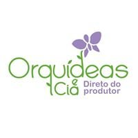 Orquideas e Cia