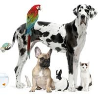 Tierarztpraxis Roux