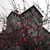 Castello di Montecchio Emilia