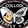 Storico Giardino Garzoni - Butterfly House
