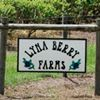 Lyna Berry Farms
