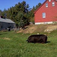 Currier Brook Farm
