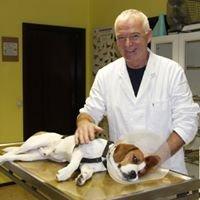 Tierarztpraxis Mitgutsch