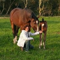 Equitación Terapéutica: Amelia Ybáñez-Psicóloga