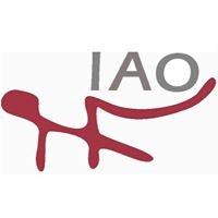Instituto Aragonés de Osteopatia