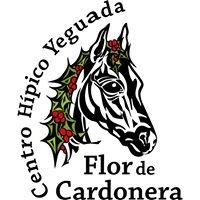 Yeguada Flor de Cardonera