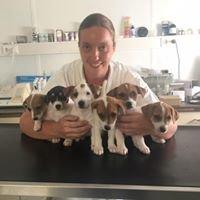 Tierarztpraxis Strasser