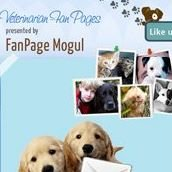 Veterinarian Fan Pages